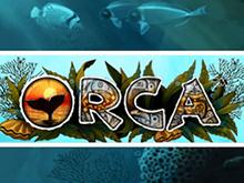 Играть в азартную игру Orca