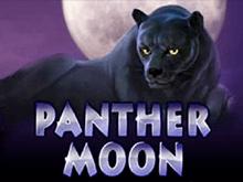 Panther Moon – игровой автомат