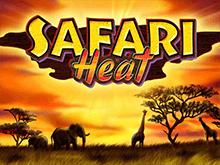 Safari Heat  – игровой автомат