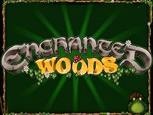 Игровой аппарат Enchanted Woods