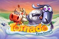 Игровой слот Tornado Farm Escape