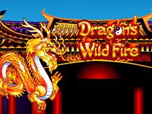 Игровой аппарат Dragon's Wild Fire