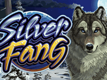 Silver Fang от Microgaming на игровой площадке